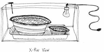 moulinex soup maker recipes pdf